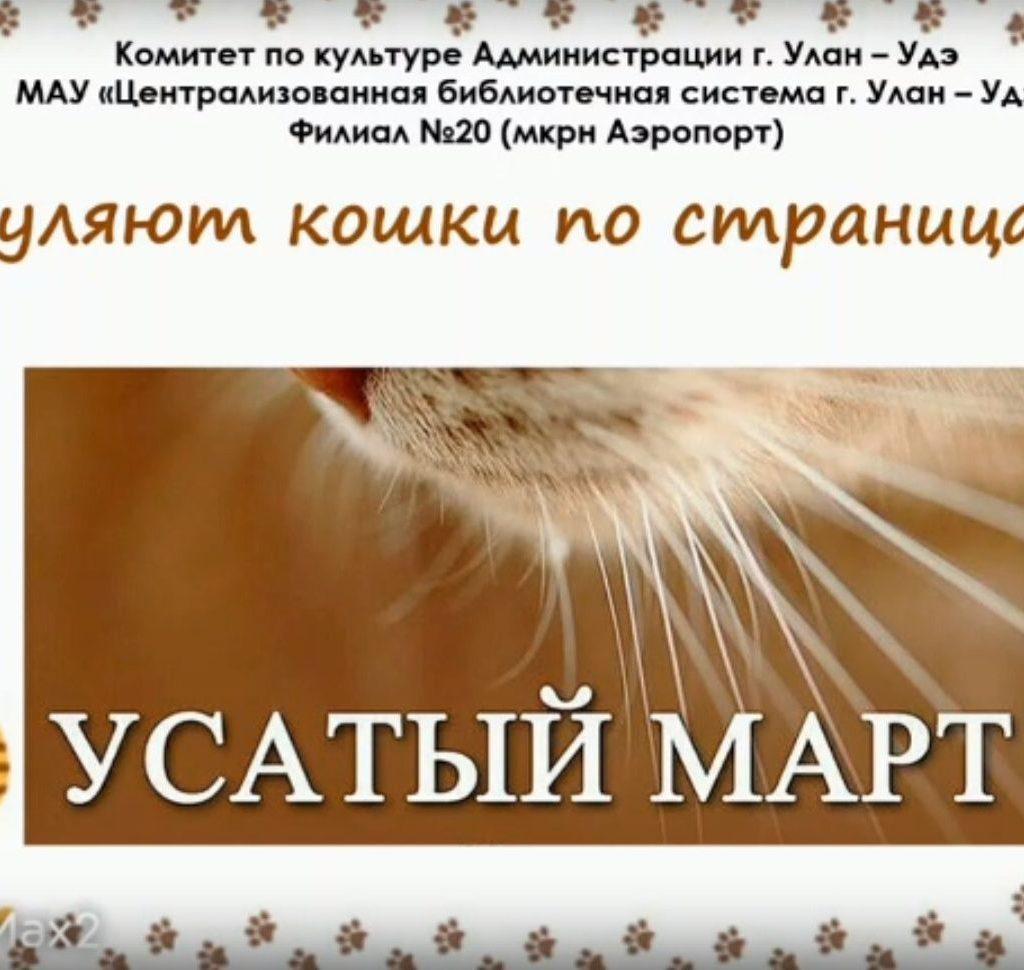 Онлайн –обзор «Гуляют кошки по страницам»